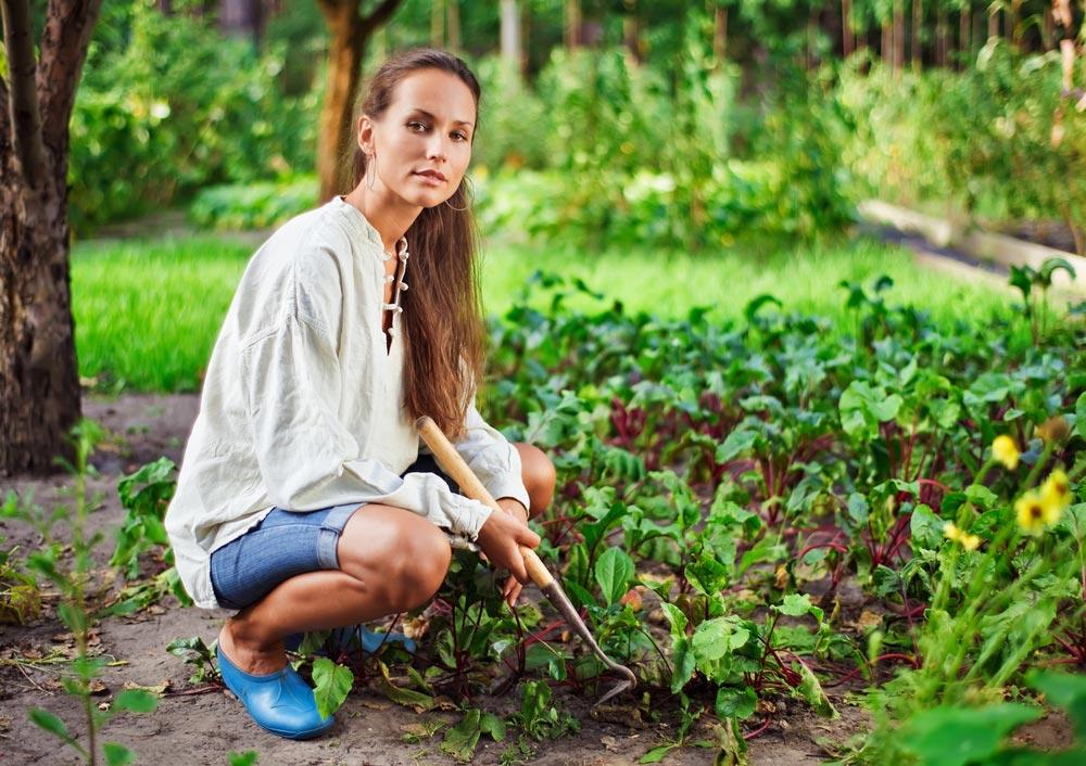 Что приносит внашу жизнь сад иогород— кроме урожая?