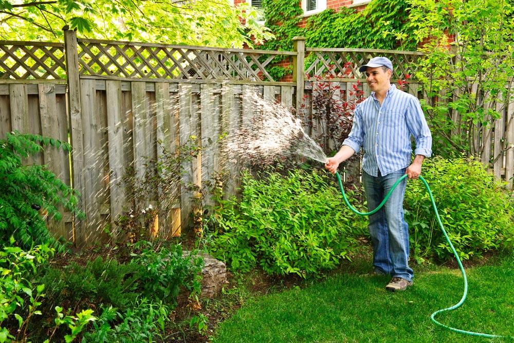 Как создать органический сад иогород ипригласить внего птиц инасекомых