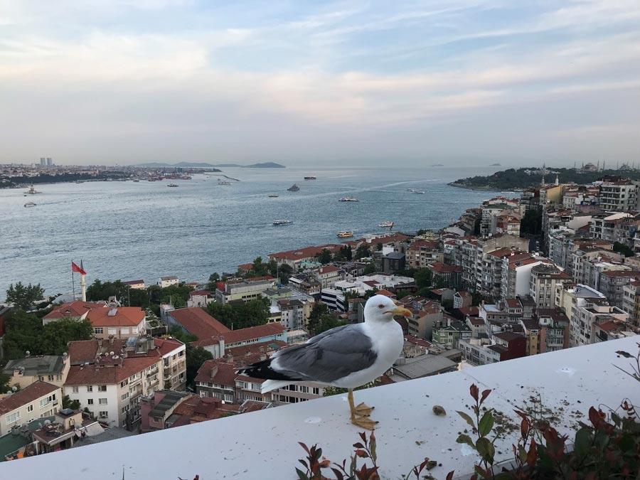 Отель вСтамбуле, отзыв