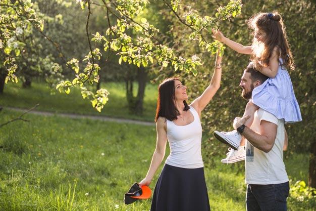 Рекупер воздуха: отзывы потребителей Winzel