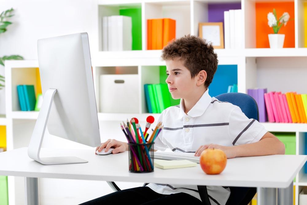 Программы, учебники, аттестации