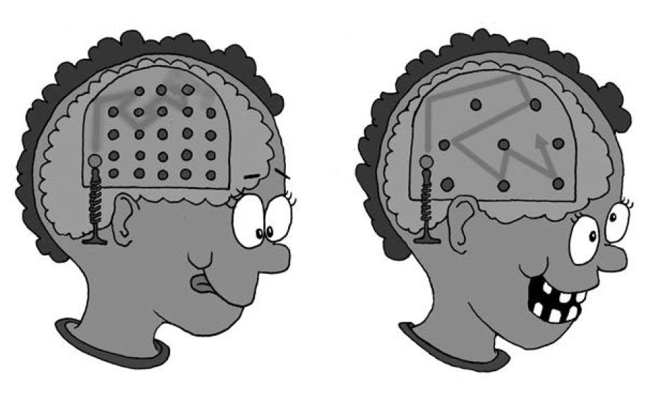 Перед вами две пинбол-версии вашего мозга