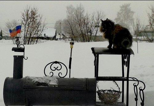 Что вы делаете на даче зимой
