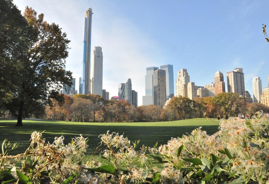 США, Нью-Йорк: достопримечательности заодин день