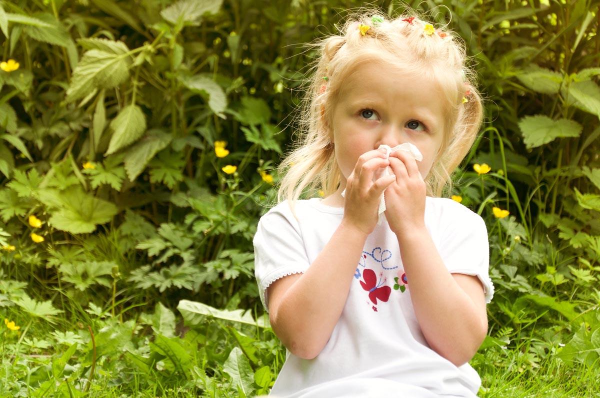 Лечение аллергического ринита и бронхиальной астмы