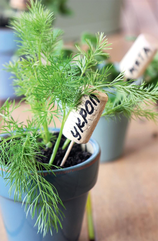 таблички для растений