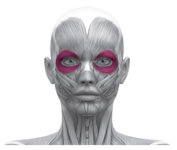 причины морщин вокруг глаз