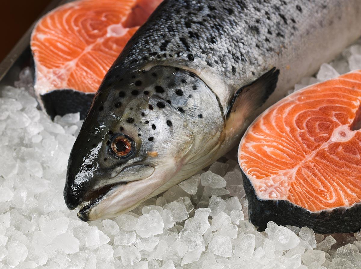 как хранится охлажденная рыба