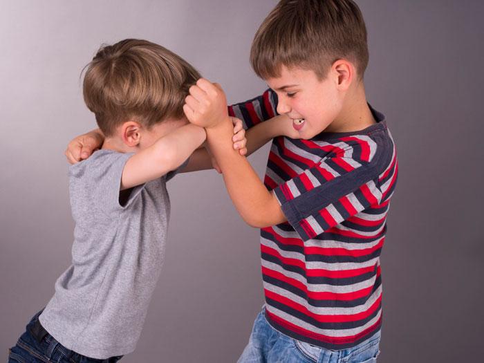 Причины конфликтов в детском саду