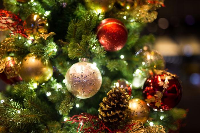 Новогодние елки и праздничные представления