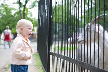 Поход в зоопарк с малышом