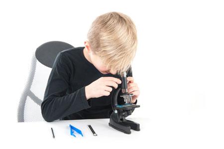 Микромир под микроскопом