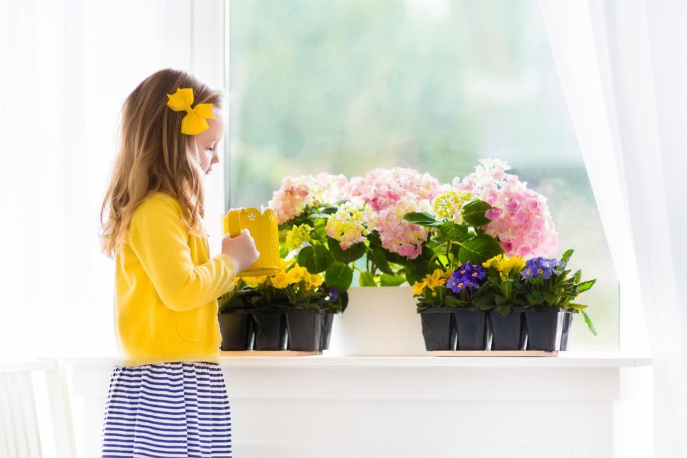 Цветоводство для самых маленьких