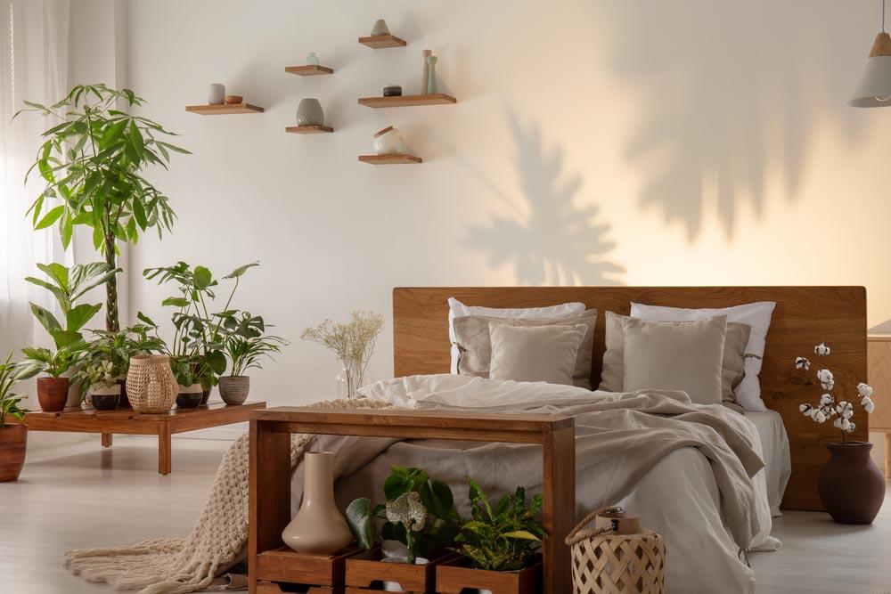 Выбираем растения для спальни