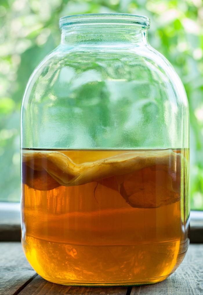 Напиток из чайного гриба