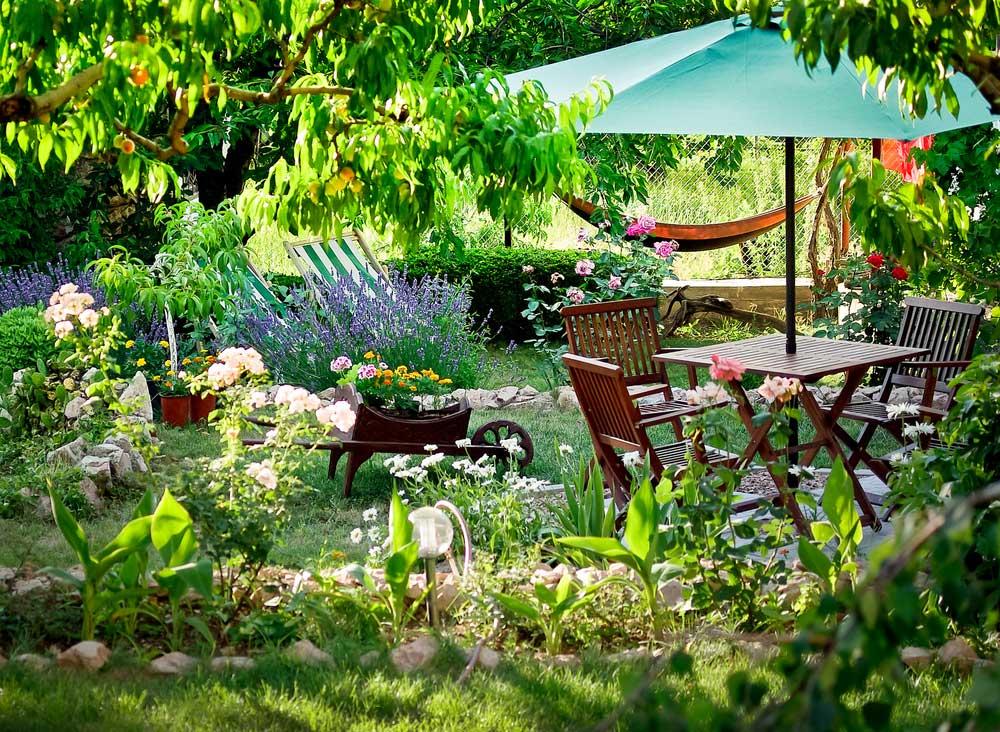 Тенистый сад своими руками