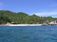 Море, солнце, пальмы и белый песок