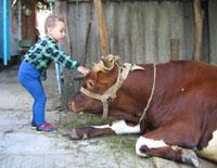 В Анапу с детьми