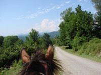 Верховая прогулка в Абхазии