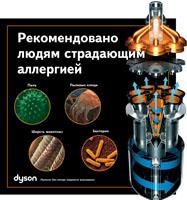Dyson DC24
