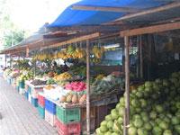 Отдых в Таиланде с годовичком