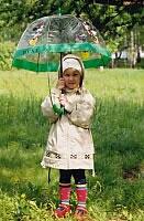 Приятный летний дождь… солнышко, радуга, огромные капли дождя на ветках лиственницы…