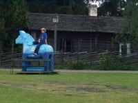 Традиционная шведская лошадь