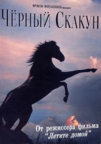 Черный скакун (The Black Stallion)