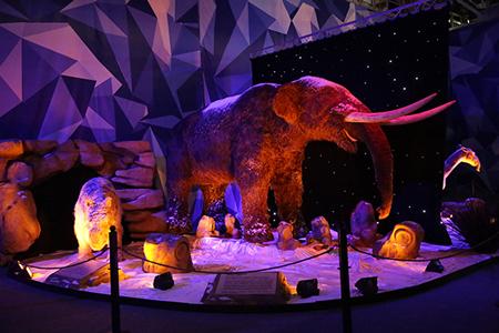 Розыгрыш билетов на выставку 'Город динозавров' - 2