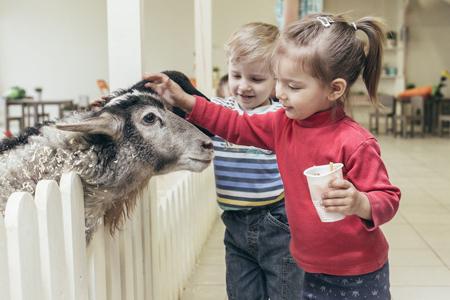 Розыгрыш билетов в контактный зоопарк 'Бебека'