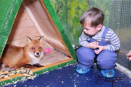 Розыгрыш в контактный зоопарк «Мой маленький мир»