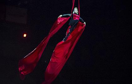 Розыгрыш билетов на шоу «Дракула. История вечной любви»