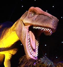 Розыгрыш билетов на выставку 'Город динозавров'