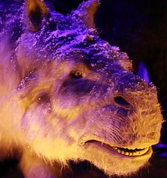 Розыгрыш билетов на выставку «Город динозавров»