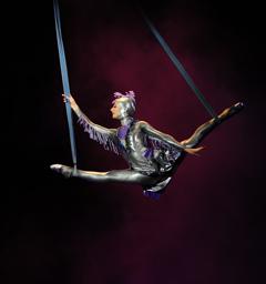 Розыгрыш билетов в цирк «Аквамарин»'