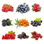 Знаете ли вы ягоды?